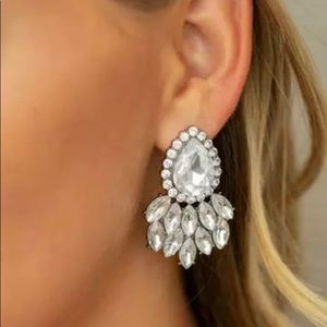 Fabulous Fashion Post Bak Earrings